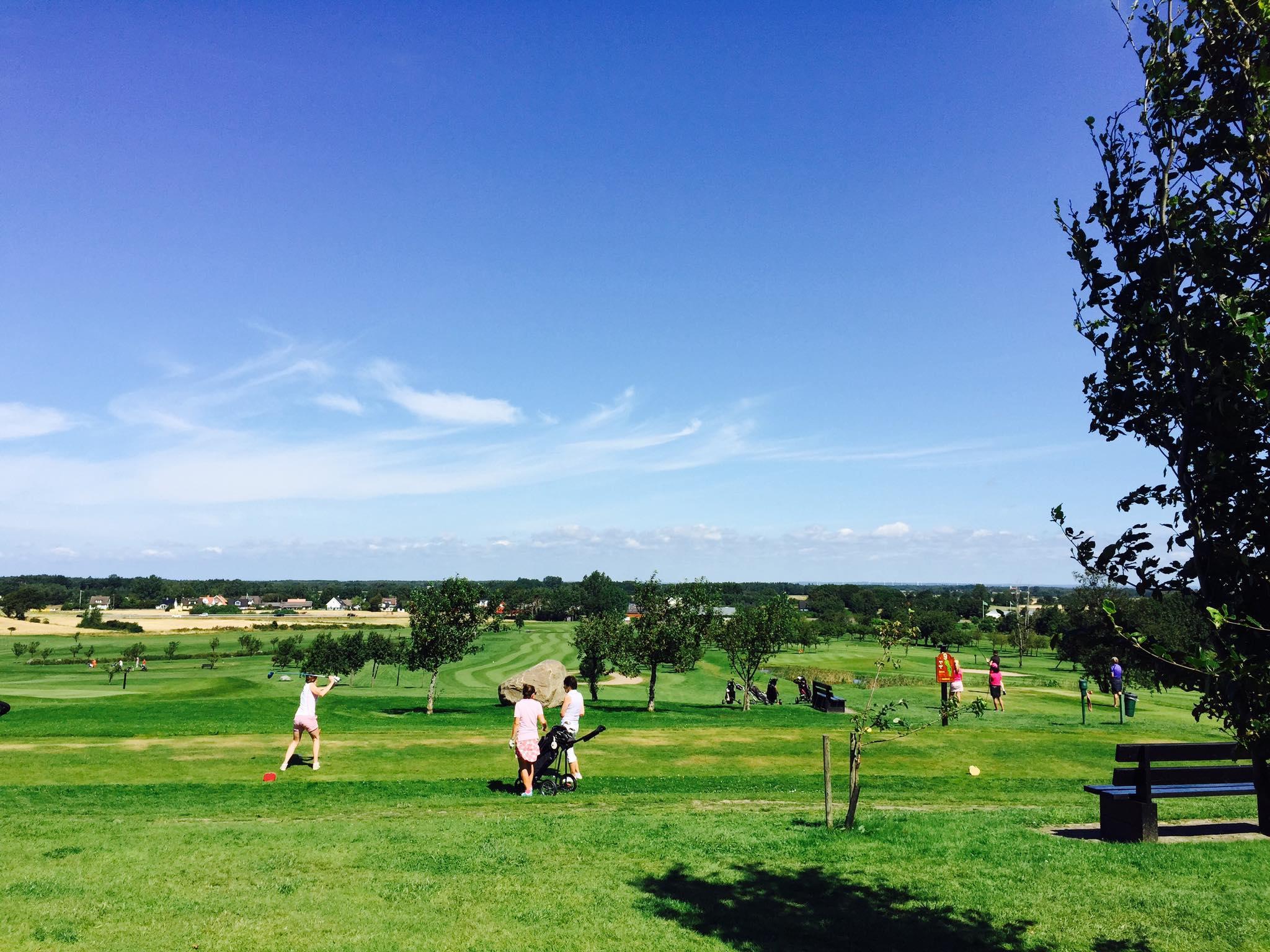 Golfare utslag