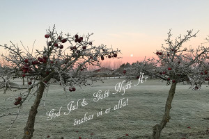 God Jul & Gott Nytt År 2017
