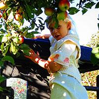 maja-appelgarden-200x200px-webb